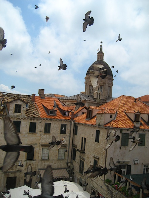 Traveling In Dubrovnik - What To Do And Where To Do it 3