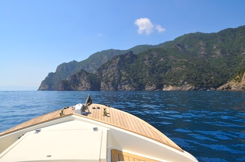 Portofino travel private boat